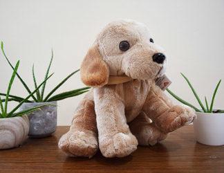 Peluche labrador sable Grand modèle