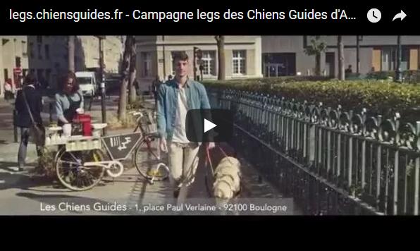 Campagne legs des Chiens Guides d'Aveugles