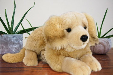 peluche Grand-golden